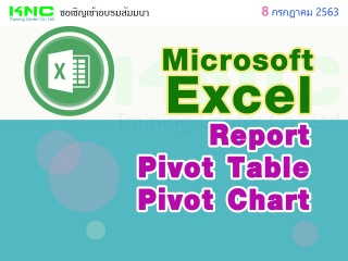 Microsoft Excel : Report & Pivot Table & Pivot Cha...