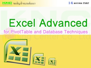 Excel Advanced for PivotTable and Database Techniq...